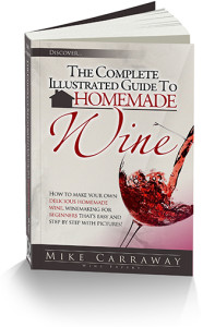 HowTo Make Homemade Wine